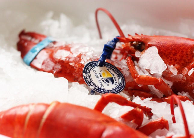 A special tag tracks Québec lobsters from the sea to your plate. // FoodNouveau.com